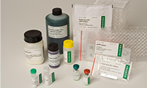 ELISA kits for Grapevine pathogens